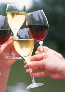 Афамия – праздник вина