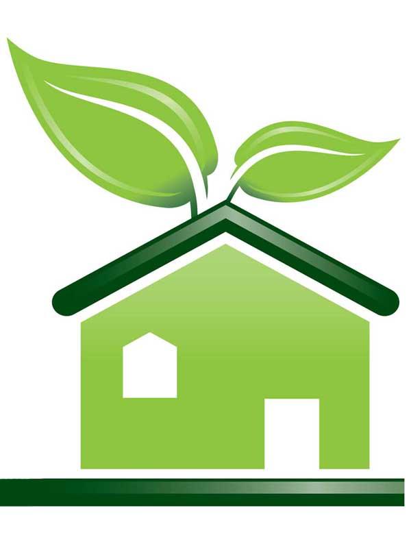 И снова о «зеленых» домах